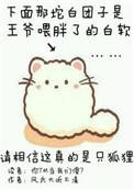 [综]轮回之修魂2